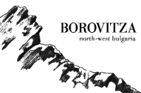 Borovitsa_logo